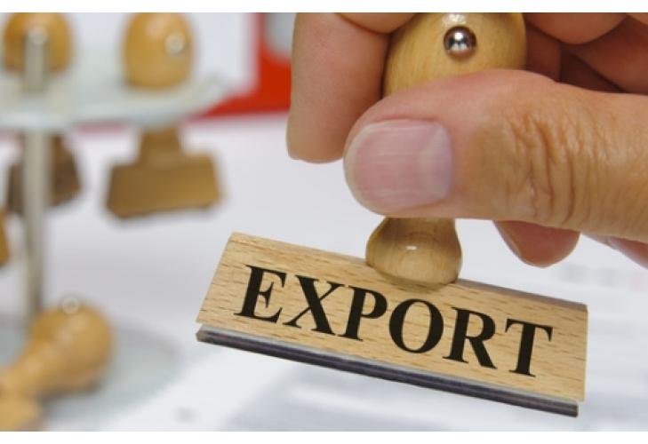 Разрешен экспорт круглой древесины