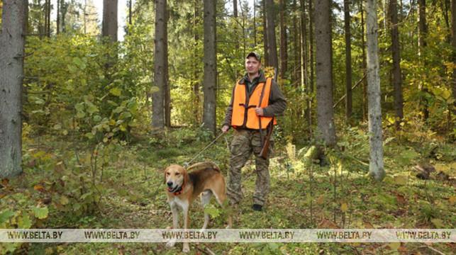 Ужесточение правил охоты